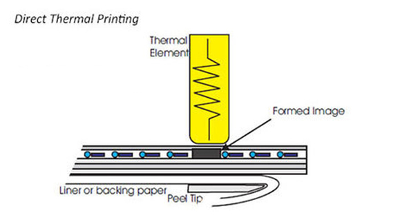 Direct Thermal Printing Labels