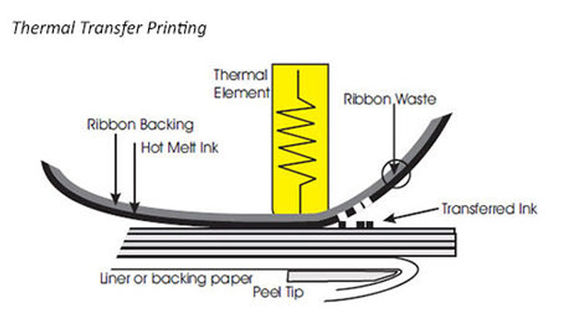 Thermal Transfer Printing Labels